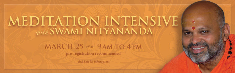 Meditation Intensive-Web Banner-Mar 2017